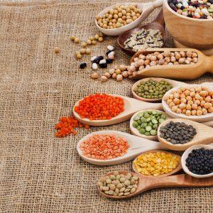 Descubriendo las Proteinas Vegetales